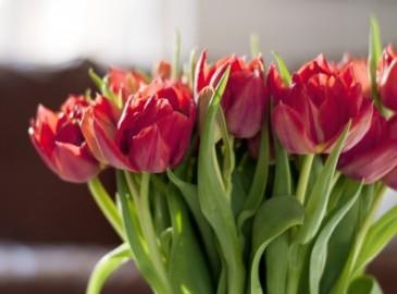 Romanttinen lahja naiselle | Anna lahjaksi unohtumaton elämys